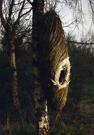 Marron Breda | Sculpture In Context 2012 | Thursday 6 September  – Friday 19 October 2012 | National Botanic Gardens