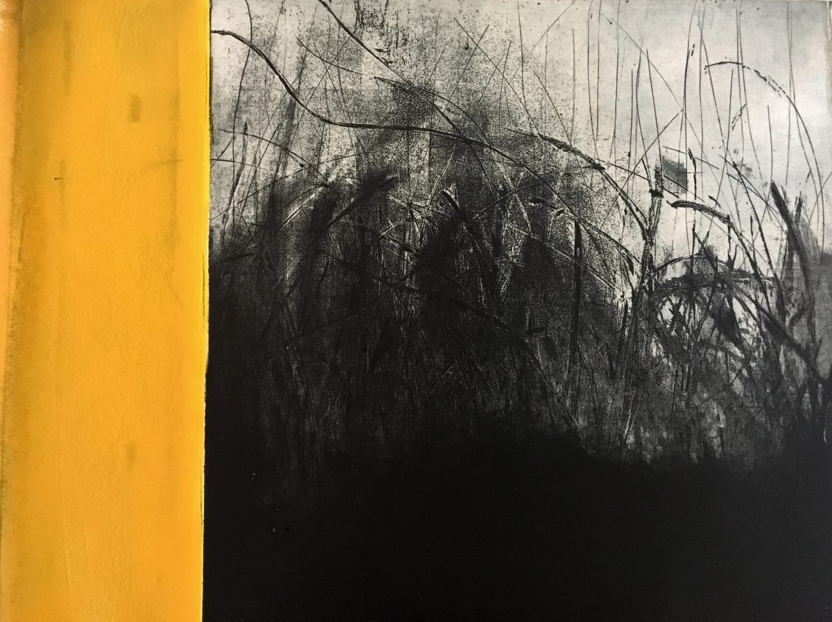 Hillary Kinahan, Bog Series #3 | The New State: Contemporary Etching in Ireland | Friday 15 March  – Saturday 6 April 2019 | Graphic Studio Gallery