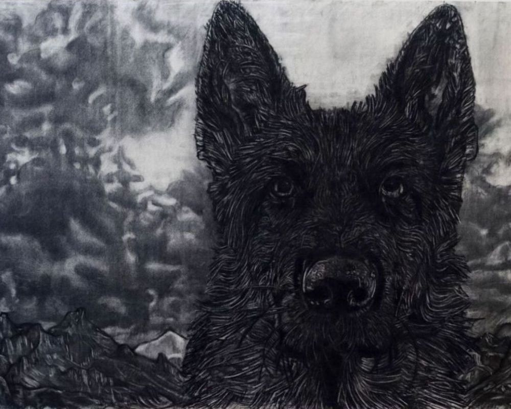 Gary Coyle: Black Dog, 2020, charcoal on paper, 150 x 180cm | Gary Coyle:Dreaming Different Dreams | Thursday 5 March  – Saturday 28 March 2020 | Kevin Kavanagh