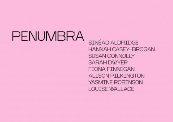 Penumbra | Saturday 15 February  – Saturday 30 May 2020 | F.E. McWilliam Gallery