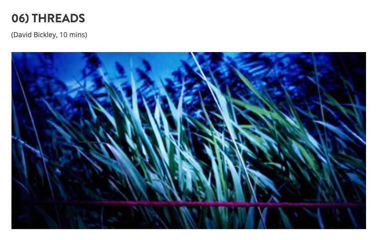 Screenshot 2020-05-04 at 12.08.31