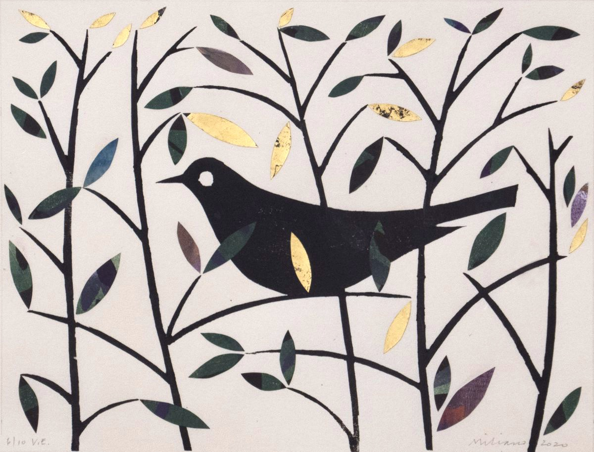 Ed Miliano: Summer Blackbird | Mokuhanga: Prints made during the lockdown | from 15 May 2020  | Graphic Studio Gallery