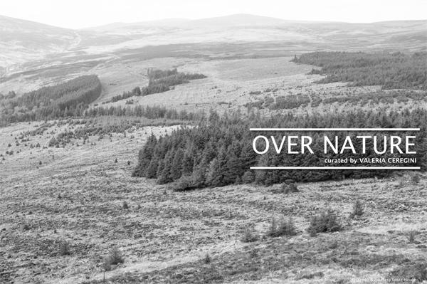 Over Nature | Saturday 26 September  – Saturday 21 November 2020 | Luan Gallery