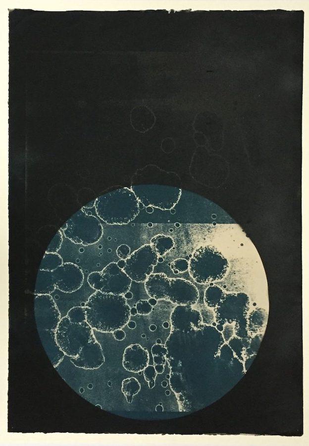 Hehir & Noonan,Worlds Within Worlds 2, 2018, cyanotype, 56 x 76 cm   Beyond Survival   Friday 30 July – Friday 27 August 2021   Studio 12