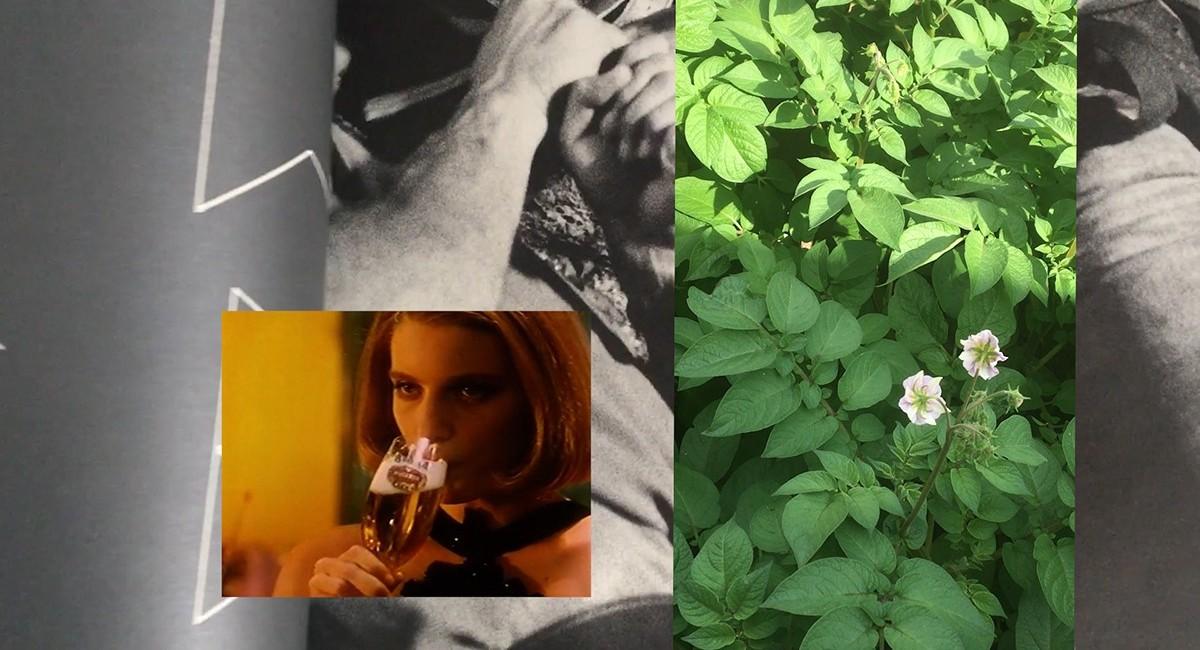 Aikaterini Gegisian,The Manipulator Vlog: Episode 1(still), 2021. Video, colour, sound, 3:57 minutes. Courtesy of SIRIUS, Ireland   Aikaterini Gegisian: The Manipulator Vlog: Episode 1   Wednesday 21 July – Saturday 25 September 2021   Sirius Arts Centre